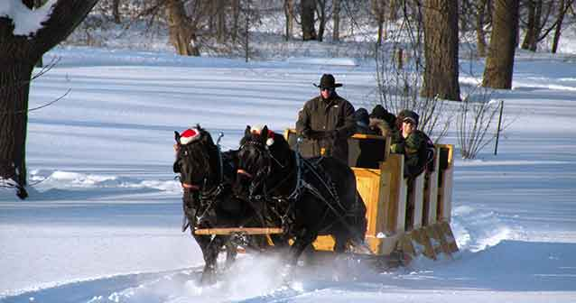 Group of people in a sleigh being pulled by 2 horses.